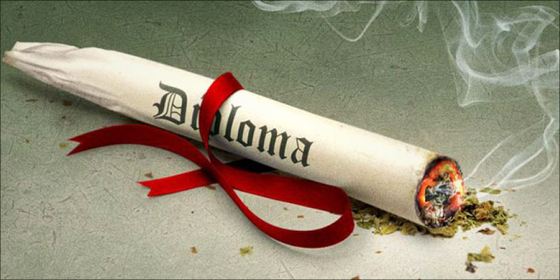 Medical Marijuanna pot Diploma U of Md. rolled up like a spleef
